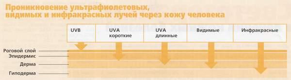 Ультрафиолетовое излучение и его действие на организм